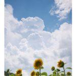 もうすぐ夏休みですね! angelotti by anyhow